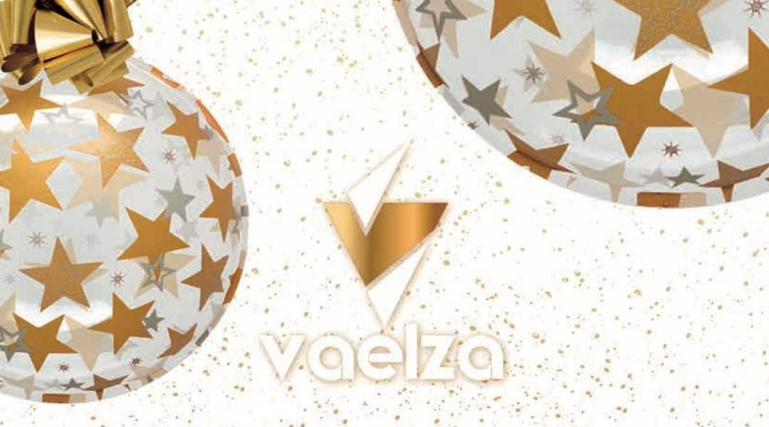 Catálogo de Iluminación y Decoración de Navidad – VAELZA 2020